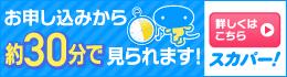加入料0円